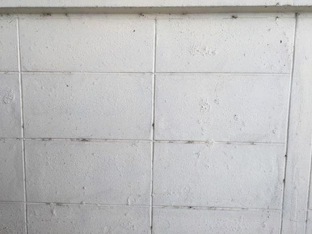 390×190のモジュールのコンクリートブロックがタイにもあるのか?