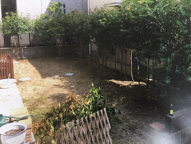 購入以来そのままにしてあったお庭をお子様とワンちゃんの為の庭にリフォームします!