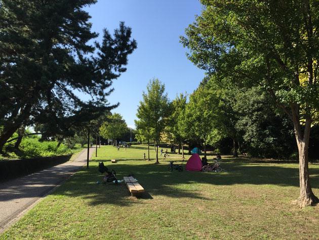 小幡緑地西園はこんなに素敵なピクニック空間があった!
