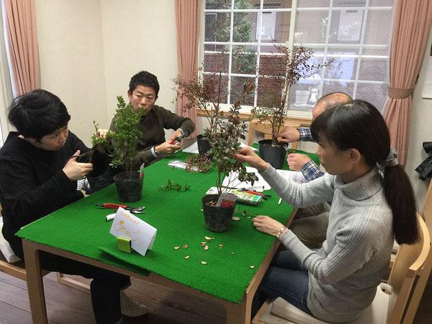 実際に植木を使っての剪定実習!これでどこをどの様に切ったらよいかを学んでいきます。