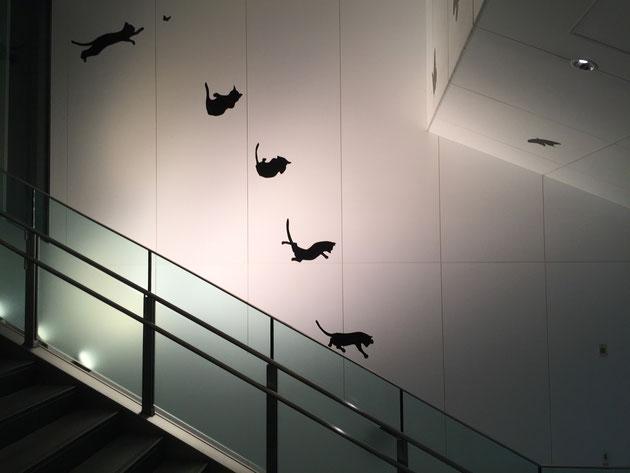 にゃんこが蝶を捕まえようとして、空中三回転?する。本当はこちらが始まりなのかも。