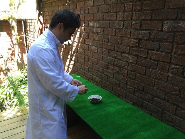 ガーデンドクター柴ちゃんのお気に入り秘密のガーデンで実験開始!