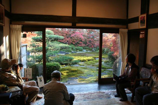 これこそ、日本庭園の醍醐味。素晴らしいお庭の眺めです。