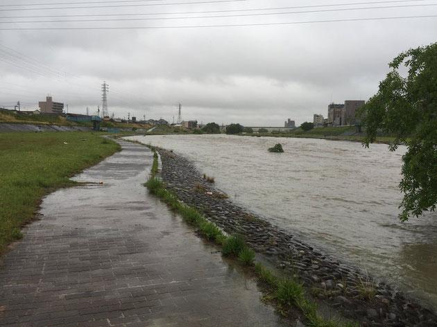 一度大雨が降ればすごい表情を見せる矢田川