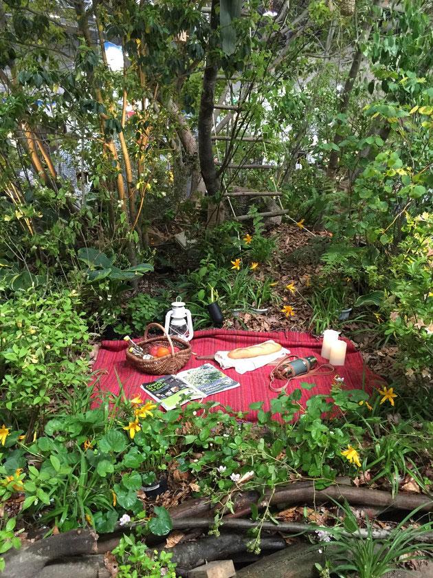 植栽スペースも年々充実して来ます。 この自然な感じ素晴らしいですね!!