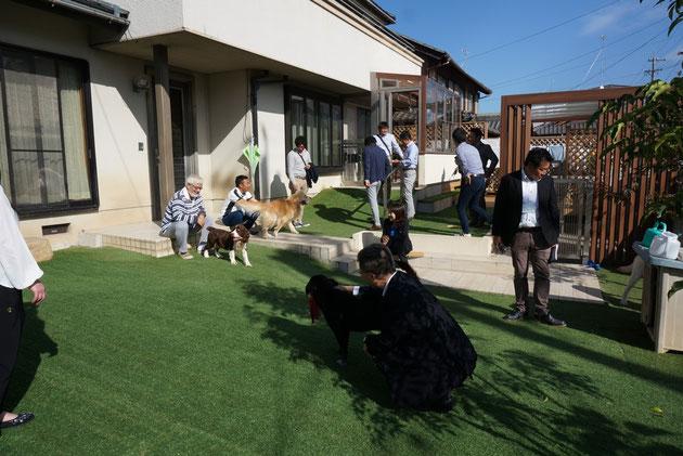 こちらも広大なドッグガーデン。大型犬が4匹。元気一杯に犬スマ会員と遊んでいます!