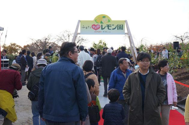 凄くたくさんの方がレモン園に足を運んでくださいました!