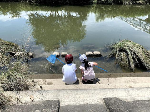 子供達は川原で何をゲットするのか!?