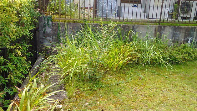 低木が植えてある部分。草取りが大変でしたが・・