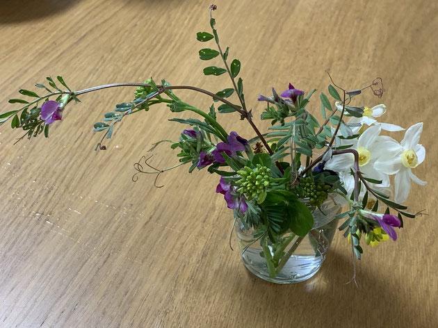 川原で摘んだ花をまとめてみました。