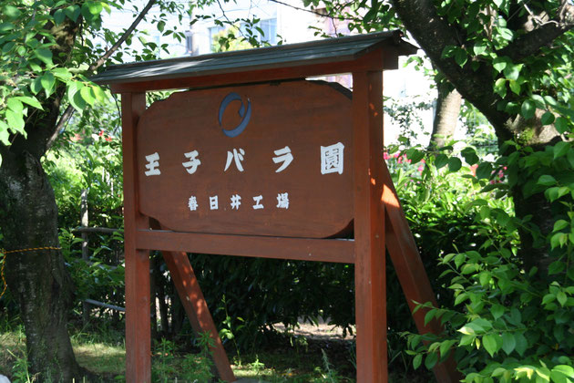 素敵なバラ園の名前は『王子バラ園』 王子製紙春日井工場の敷地内にある