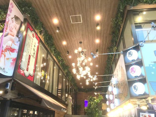 天井には素敵なライトと天井緑化?