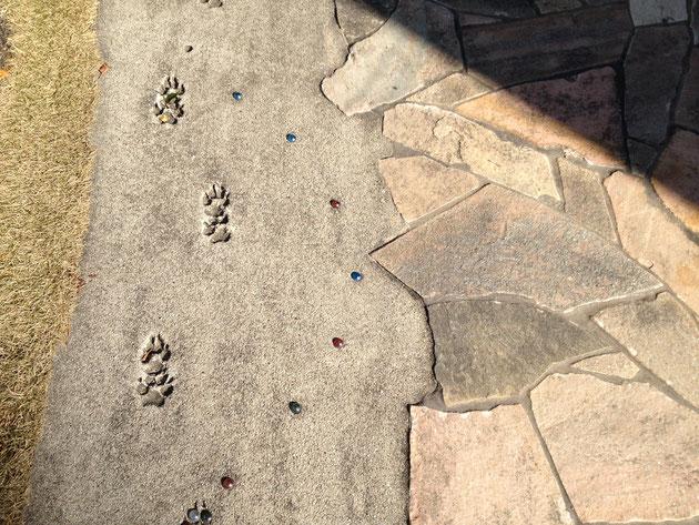 我が愛犬「クー」の足跡をコンクリート仕上げに入れました。お気に入り。