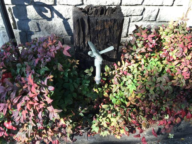 弊社の枕木立水栓。蛇口は鳥が飛んでいる。