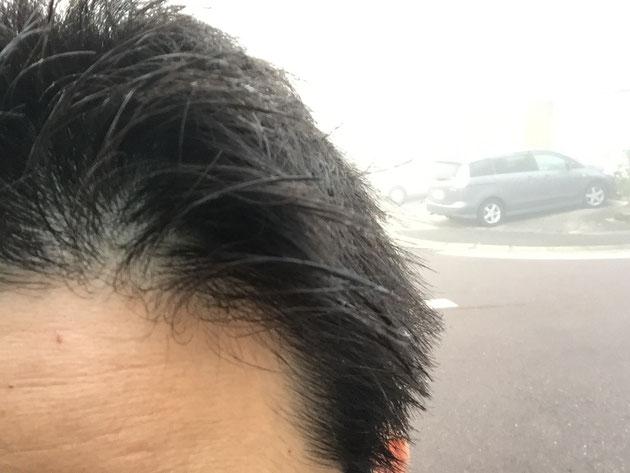 霧で髪の毛がしっとりと濡れていました。決してヘアワックスを使ったわけではありません。