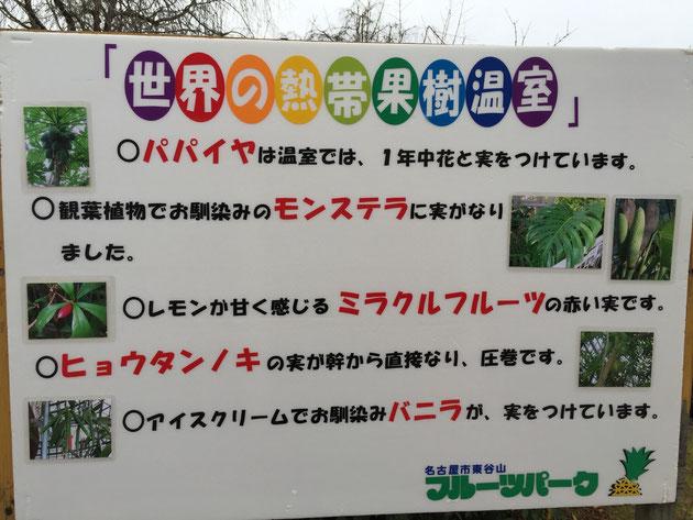 見所が書いてあるフルーツパークの掲示板。温室には沢山面白いものが生っているみたいです。その中で気になるものが・・・