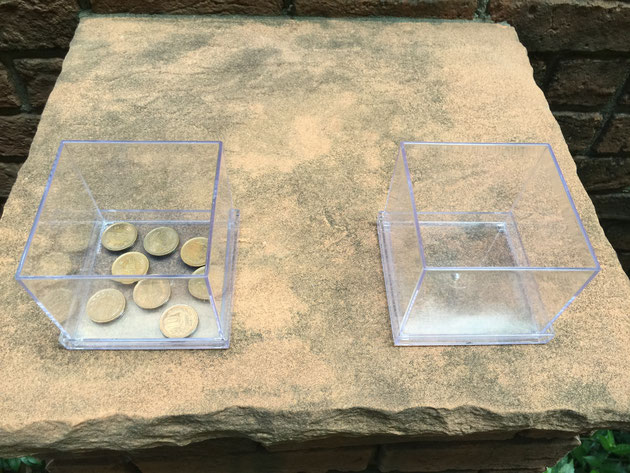 10円玉は果たして蚊の発生を抑える事が出来るか?