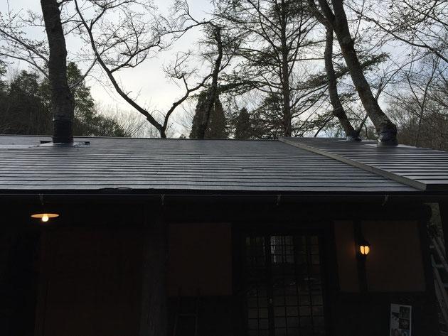 アルティストビラージュのギャラリエ。あと二本、屋根から木が突き出していた。