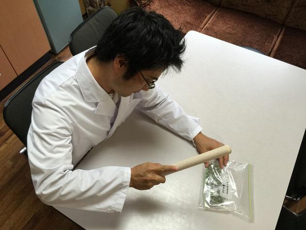 エゴの実で石鹸水を作るガーデンドクター柴ちゃん