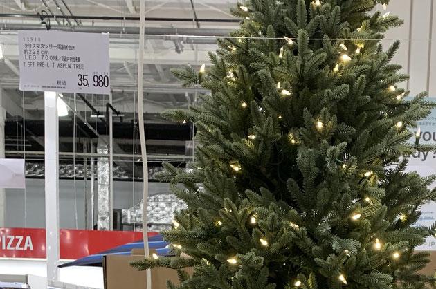 228cmのコストコのクリスマスツリー。35980円