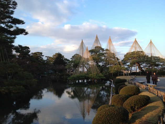 金沢・兼六園の『雪吊り』 冬の日本庭園の風物詩だ