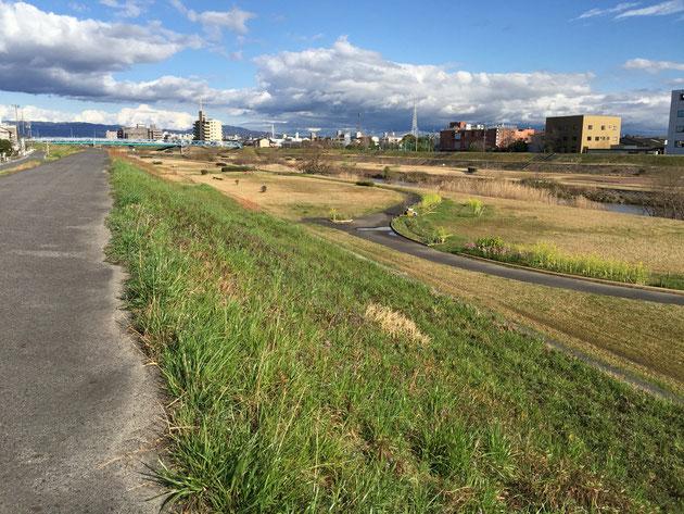 守山区にある柴垣グリーンテックから歩いて五分の矢田川河川敷。