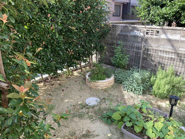 Before 南側の生垣と西側のお隣のブロックで囲われた庭空間