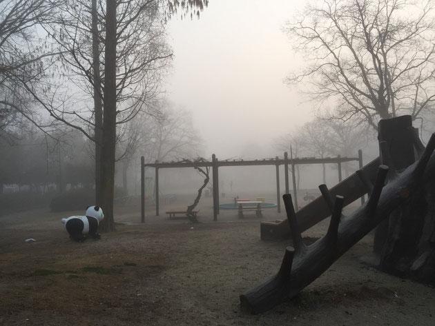 2016年3月8日の朝。霧で20mくらい先までしか見えない。これが春霞?