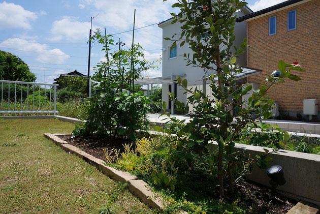 芝生の庭に石材で囲って簡単な菜園を作る