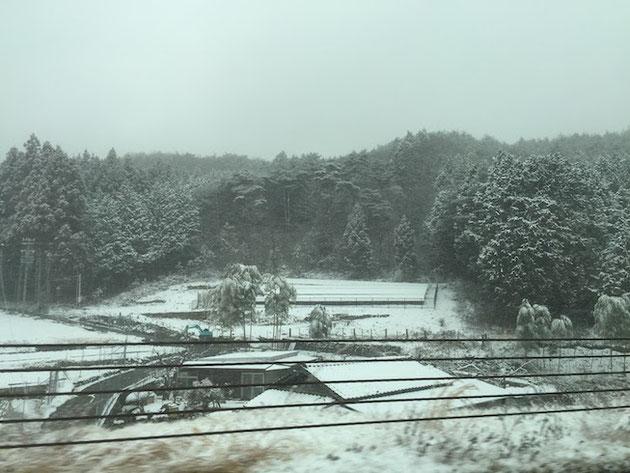 ここはどこだ?と言うくらいの雪景色。やっぱり山間部は降りますね!