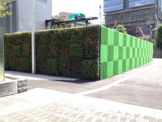 先ほどの壁面緑化の隣は、人工芝の壁でした