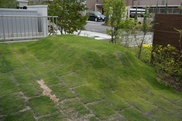 余った土を盛って作った芝生の丘。