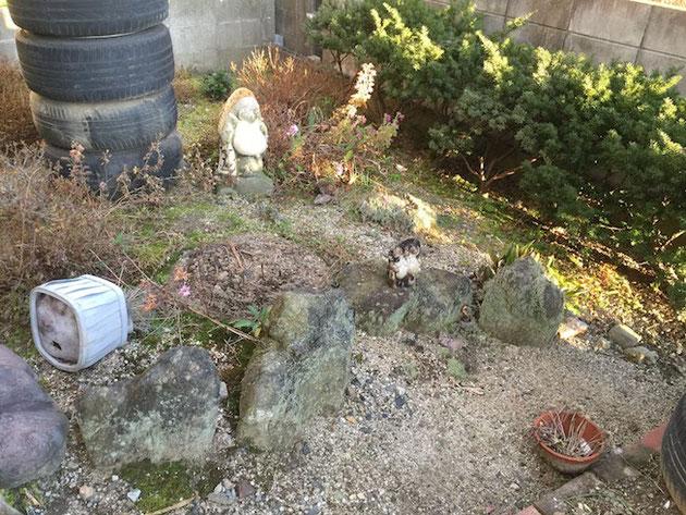 和風庭園の面影が残るお庭。
