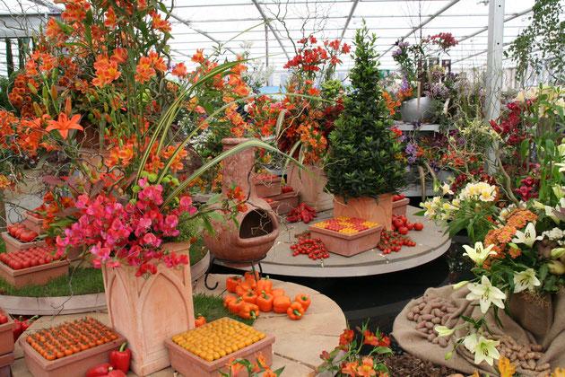 こちらもチェルシーのショウガーデン。ディスプレイにパプリカやトマトが飾られている。これはキッチンガーデンじゃないな。