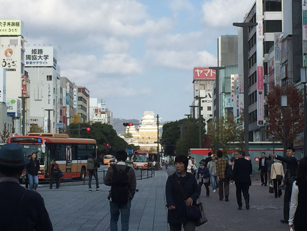 今年2回目の姫路訪問!今回も姫路城が素敵に見えました!!!