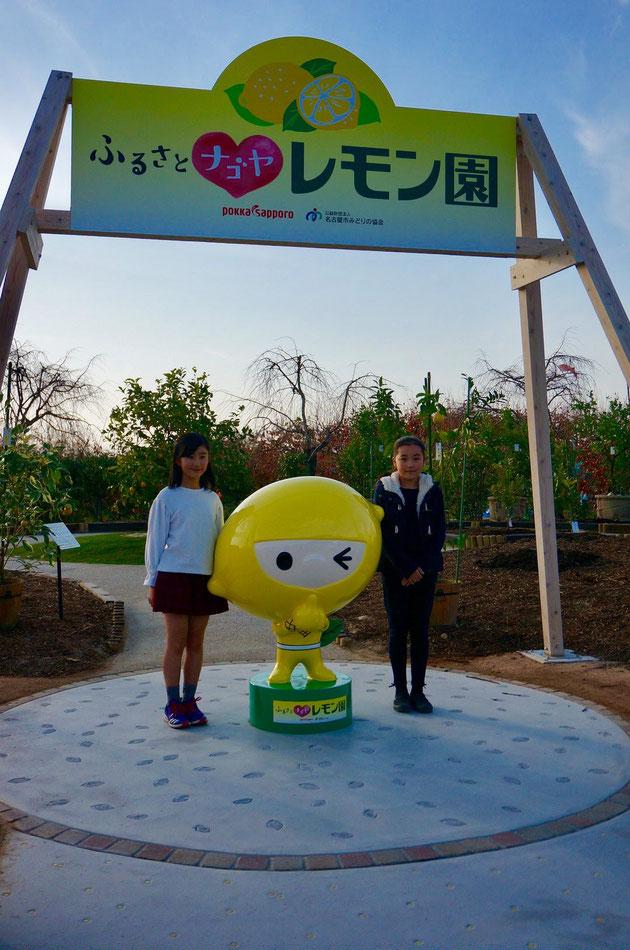 『ふるさとナゴヤレモン園』が東谷山フルーツパークに12月2日オープン!!!モデルの様に可愛らしいお二人の写真を撮らせて頂きました!
