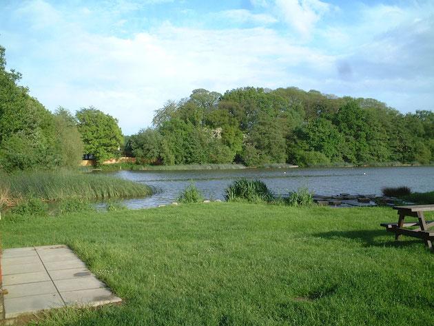 こんな湖が家の直ぐ隣にありました。良い所だなあ。