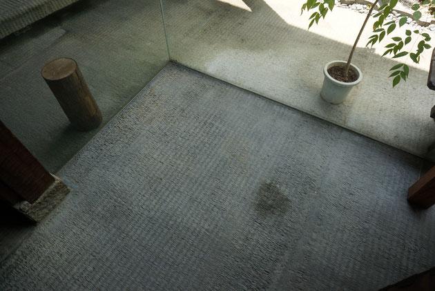 ゴザの模様を付けて仕上げてあると思われるモルタル床。滑り難いし表面は石の様に見えるし。素晴らしいアイディアだ。