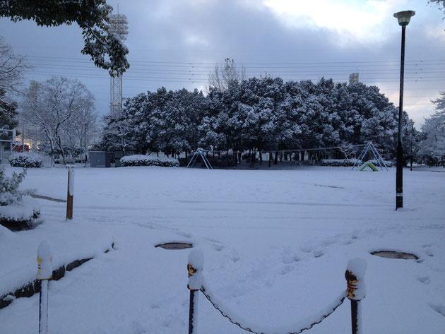 大森中央公園も凄い積雪