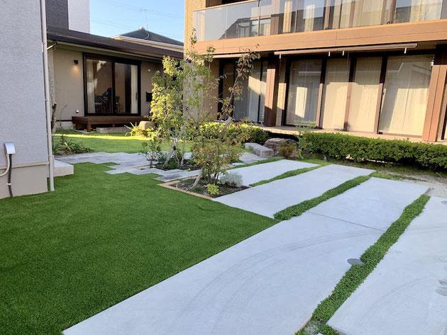 コンクリートの隙間があれば植物を植えることができる。
