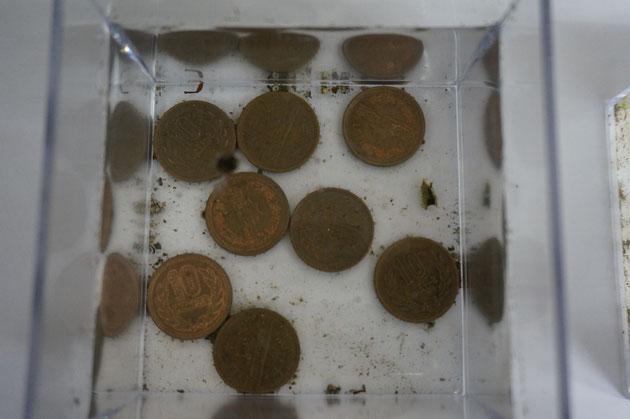 10円玉を入れた容器を設置してから一ヶ月。ゴミはたくさんたまった。