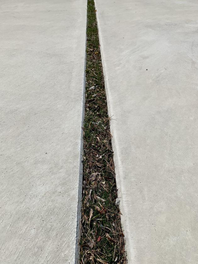 人工芝の目地に溜まった落ち葉