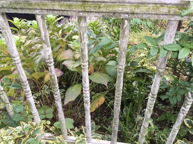 白いアルミのフェンス。25年経つとこのように汚れや苔が付いてくる。