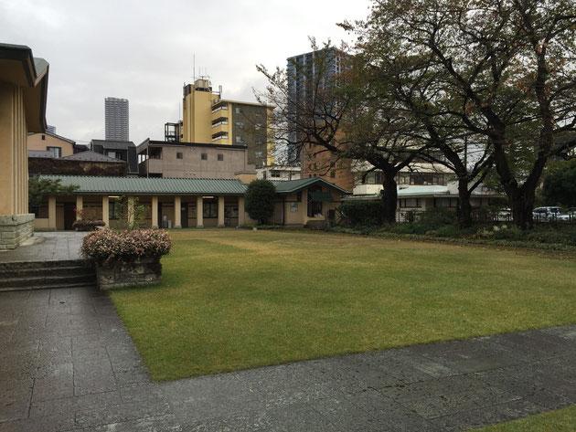 校庭は芝生が植えられています。そして、道沿いに植えられたソメイヨシノ。桜のシーズンは最高に美しいに違いない。
