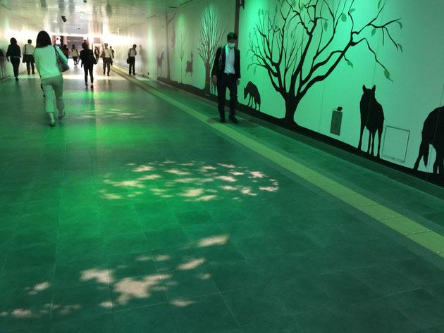 そして次は森?サバンナ?緑の空間に木陰のように演出された光が。