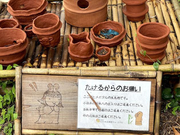 上志段味の歴史の郷にある竹林の中出発見しました!この土器は!?