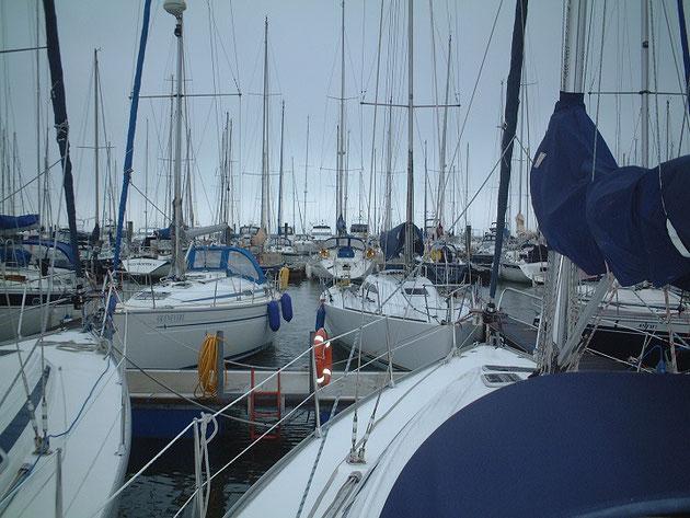 ヨットがたくさん停泊しているマリーナ。イギリスはたくさんヨットがある。