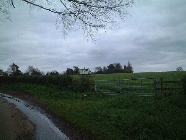 イギリスの曇り空 イギリスらしい風景ですね