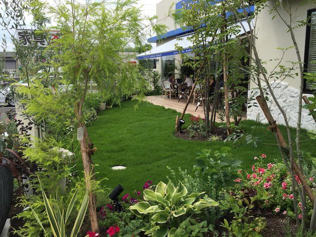ギボウシや他もカラーリーフも青々とした芝生によく映えますね。