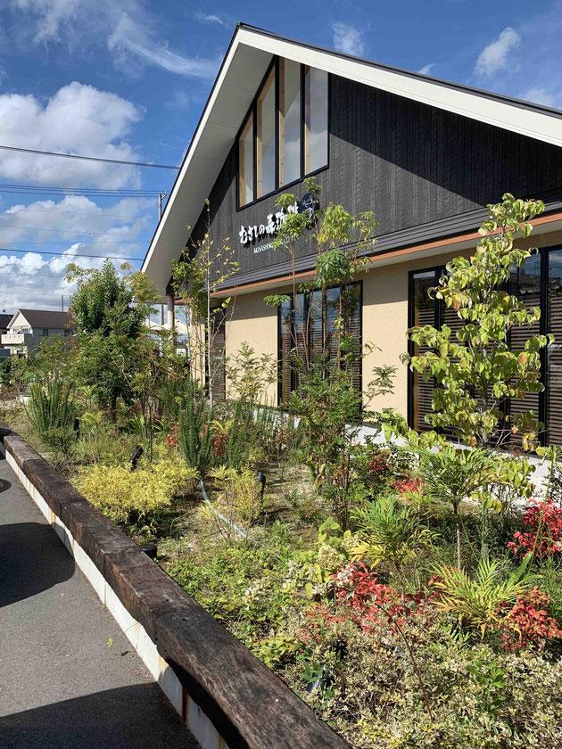 むさしの森珈琲さんはゆったりとした緑のスペースが設けられている!